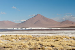 Laguna Colorada Royalty Free Stock Photography