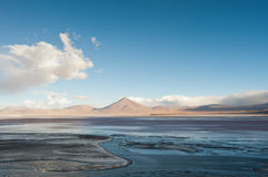 Laguna Colorada Royalty Free Stock Photos