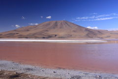 Laguna Colorada Royalty Free Stock Image