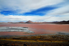 Laguna Colorada Immagini Stock Libere da Diritti