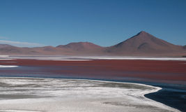 Laguna Colorada. The beautiful Laguna Colorada in Bolivia Royalty Free Stock Photos
