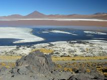 Laguna Colorada, Altiplano, Bolivia Royalty Free Stock Image