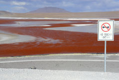 Laguna Colorada, Altiplano, Bolivian Andes. In the southwest part of the Bolivian Andes, in the province of Sud Lípez, part of Potosi, in the middle of the Royalty Free Stock Images