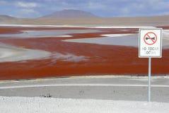 Laguna Colorada, Altiplano, bolivianische Anden Lizenzfreie Stockbilder