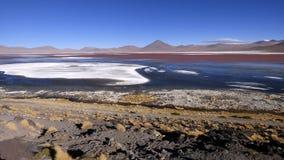 Laguna-colorada in Altiplano Bolivien, Südamerika lizenzfreies stockfoto