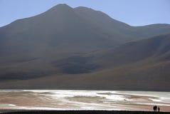 Laguna Colorada, Altiplano, de Boliviaanse Andes Royalty-vrije Stock Fotografie