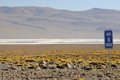 Laguna Colorada, Altiplano, de Boliviaanse Andes Stock Afbeelding