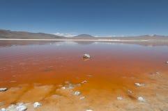 Laguna Colorada - Bolivia Royalty Free Stock Images