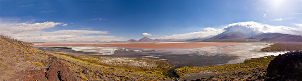 Laguna Colorada, Bolivia. Panorama of the Red Lagoon (Laguna Colorada) Bolivia, as seen from its borders Royalty Free Stock Image