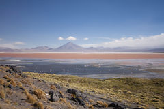 Laguna Colorada, Bolivia. The red lagoon (Laguna Colorada in Spanish) as seen from its borders Stock Image