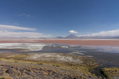 Laguna Colorada, Bolivia. The red lagoon (Laguna Colorada in Spanish) as seen from its borders Royalty Free Stock Photos