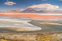 Laguna Colorada Royalty Free Stock Images