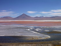 Laguna colorada in bolivian altiplano with flamingos Stock Photography