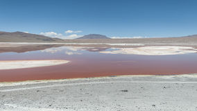 Laguna Colorada, Boliwia - Obrazy Royalty Free