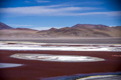 Laguna Colorada in Cordillera de Lipez, Bolivia. Laguna Colorada (Red Lagoon)in the Avaroa National Park in Bolivia Royalty Free Stock Images