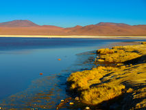 Laguna Colorada in Cordillera de Lipez. Laguna Colorada or Red Lagoon and typical brown mountains in bacground,, Reserva Nacional de Fauna Andina Eduardo Avaroa Stock Image