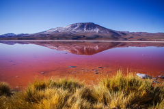 Laguna colorada die op berg wijzen Stock Afbeeldingen