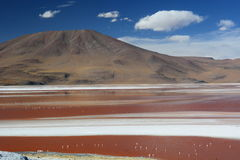 Laguna Colorada. Eduardo Avaroa Andean Fauna National Reserve. Bolivia. Laguna Colorada is a shallow salt lake in the southwest of the altiplano of Bolivia Stock Image