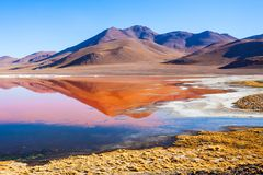 Laguna Colorada lake. Laguna Colorada, means Red Lake is a shallow salt lake in the southwest of the Altiplano of Bolivia Stock Photos