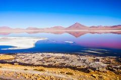 Laguna Colorada lake Stock Image