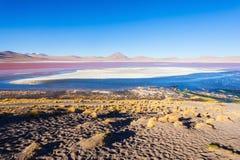Laguna Colorada lake Stock Photography