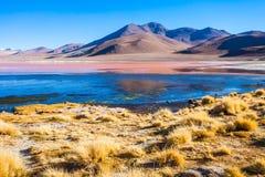 Laguna Colorada lake Stock Photos