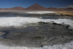 Laguna Colorada landscape Royalty Free Stock Photos