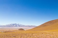 Laguna Colorada view, Bolivia. Laguna Colorada landscape,Bolivia. Beautiful bolivian panorama. Red water lagoon Stock Photos