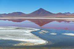 Laguna Colorada landskap i de Anderna bergen av Bolivia royaltyfria bilder
