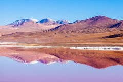 Laguna Colorada lake. Laguna Colorada, means Red Lake is a shallow salt lake in the southwest of the Altiplano of Bolivia Royalty Free Stock Image