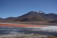 Laguna Colorada mit einem Vulkan hinter dem See Stockbild