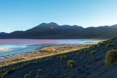 Laguna Colorada, ondiep zout meer in het zuidwesten van altiplano van Bolivië stock afbeelding