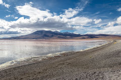 Laguna Colorada Red Lagoon in Bolivean altiplano - Potosi Department, Bolivia Royalty Free Stock Photography