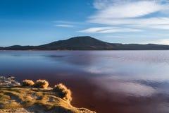 Laguna Colorada Stock Photography