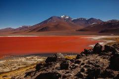 Laguna colorada in reserva Eduardo Avaroa, altiplano van Bolivië Salar DE uyuni royalty-vrije stock fotografie