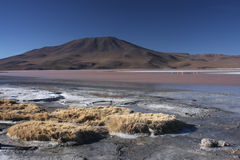 Laguna Colorada shore. Laguna Colorada (Red Lagoon) is a shallow salt lake in the southwest of the altiplano of Bolivia close to the border with Chile Royalty Free Stock Photo