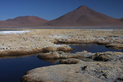 Laguna Colorada shore Stock Photography