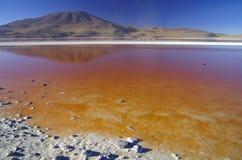Laguna Colorada. In southern Bolivia Stock Photography