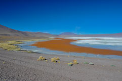 Laguna Colorada, Sur Lipez, South Bolivia Stock Photography