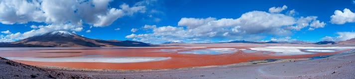 Laguna Colorada - zout meer in het zuidwesten van Altiplano van Bolivië stock foto's