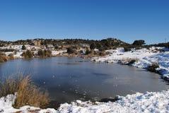 Laguna congelata Fotografie Stock