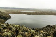 Laguna de Atillo encontrada en una paramera fotos de archivo