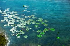 Laguna de Bacalar Lagoa em México maia fotografia de stock