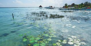 Laguna de Bacalar Lagoon nel Messico maya fotografie stock libere da diritti