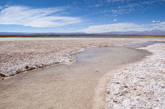 Laguna de Cejar, Chile imágenes de archivo libres de regalías