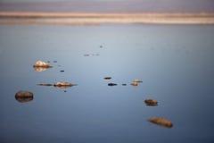 Laguna de Chaxa Stock Image
