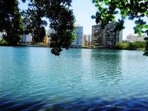 Laguna de Condado - Porto Rico fotos de stock