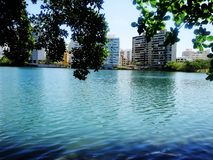 Laguna de Condado - Puerto Rico stock photos