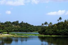 Laguna de Pituaçu, situada en la zona urbana de la ciudad de Salvador, Bahía, el Brasil fotografía de archivo