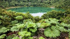 Laguna del cratere del ` s del vulcano del ¡ s di Poà vecchia immagini stock libere da diritti
